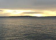 Sailboats Racing on Puget Sound